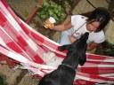 Marina Baba, - gato Mick, cachorra Magali, rede - Casa Josepha, São Caetano do Sul