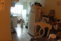 0 - cachorra Branquinha - Apartamento Max, São Caetano do Sul
