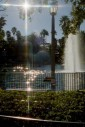 -  - Disney MGM Studios, Orlando